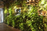 New Design Landscape Design Orange Leaf Fake Grass Wall Artificial Green Wall for Decoration