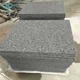 G603 Tile/Sesame White Granite Tile /Grey Granite Tile