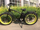 New Zealand Market Electric Bike Snow Ebike for Sale