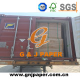 Clay Coated Grey Back Duplex Board in Sheet Packing
