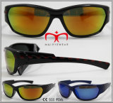 Fashionable and Hot Selling Sport Sunglasses (WSP610719)