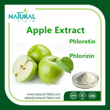 High Quality Natural Apple Peel Extract / Phloretin Powder 98%
