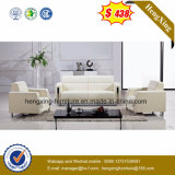 New Design Home Furniture Modern Leather Sofa (HX-CS057)