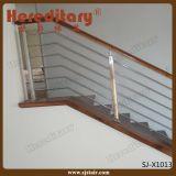 Indoor Stainless Steel Solid Rod Balustrade/Stair Rod Railing (SJ-X1013)