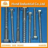 Stainless Steel 304/316 M16X60 DIN571 Coach Screw