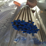 304 321 316 AISI 600 Stainless Steel Tube