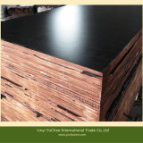 Film Faced Plywood with Logo or Without Logo Good Quality