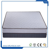 Customized Fabric Softness Natural Latex Mattress Coconut Palm Mattress