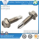 Stainless Steel Hex Washer Head Self Drilling Screw
