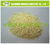 Garlic Granule 5-8mesh for USA Market