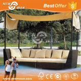Outdoor Leisure Wicker Furniture / Garden Furniture (Rattan Sofa)