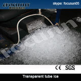 Focusun Brand Low Price Tube Ice Plant