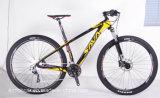 29′′ Carbon Fiber Mountain Bicycle