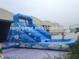 Commercial Inflatable Water High Slide/Inflatable Slide with Pool