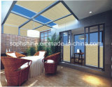 Electronic Control Honeycomb Shades Between Double Hollow Glass for Shading or Partition