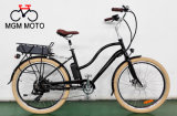 Hot Sale Classical Model Cheap Fat Electric Bicycle