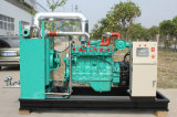 Biogas/ Methane Gas Generator Set (20kw-1000kw)