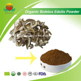 Manufacture Supply Organic Boletus Edulis Powder