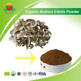 Manufacture Supply Organic Boletus Edulis Powder