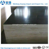 1250X2500X20mm Black/Browm Film Faced Plywood for Construction