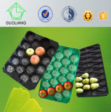 China Factory Direct Sale Vacuum Thermoforming Liners Container for Fruit with Different Sizes and Color