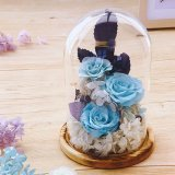 3-4 Years Lasting Preserved Blue Rose Flowers in Glass Dome