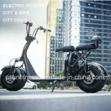 Two Wheels Fat Tire Electric Scooter with Ce