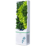 Standing Plant-Based Air Purifier 8800 with UV Lamp, Negative Ion for Office, Home Use.