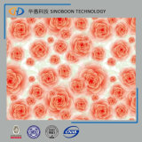 Flower Pattern PPGI Prepainted Steel Sheet at Best Quality