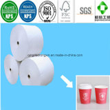 Food Grade PE Coated Paper for Paper Cup