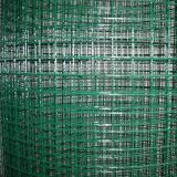Welded Wire Mesh --- Galvanized/PVC Coated