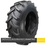 Irrigation Tires 14.9-24 and Wheels W10X24