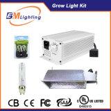 CMH Ballast Kit with 315 CMH Digital Ballast with Lec 315 Bulb