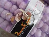 2017 New Crop White Garlic with Good Price