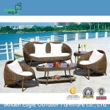 2015 New Sofa Outdoor Rattan Furniture, Garden Sofa Furniture Fp0042