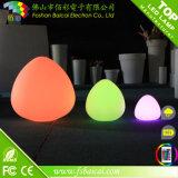 Wholesale Rechargeable Remote Control LED Decoration Light