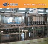 Alkaline Water Filling Machine for Pet Bottling Line