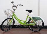 Public Bicycles-Standard Type Bike