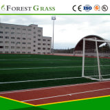 Cheap Thick Artificial Grass Turf for Football Field (STO)