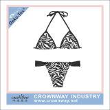 Two Piece Women Hot Sexy Bikini Swimwear with Leopard Printing