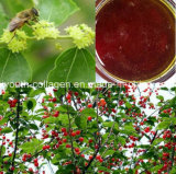 Honey,Top Wild Zizyphus Jujube/Cc Fruit Honey Queen,Rare,Precious Anticancer, Beauty Skin,Antiaging, No Pollution,No Heavy Metal,No Antibiotics,Nourish Blood