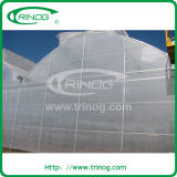 Commercial Agricultural Multispan Film Greenhouse with gutter