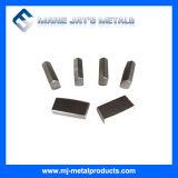 Standard Saw Tips / Carbide Tools / High Quality Saw Tips
