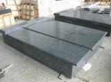 Popular Bainbrook Brown Granite Tombstone for Poland Market