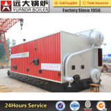 Stable Working Condition Coal and Wood Fired Steam Domestic Boiler