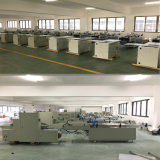 Two Rows Automatic Paper Cup Packing Machine