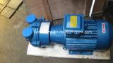 2BV2 061 Liquid Ring Vacuum Pump