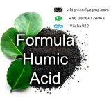China Factory Supply Best Quality Humic Acid