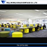 Modern Design Office Workstation for 10 Seats