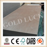 Qingdao Gold Luck High Quality Okoume Plywood for Sale